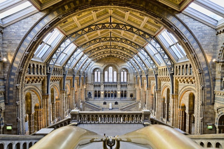 Natural History Museum, Things to do in London, England, UK