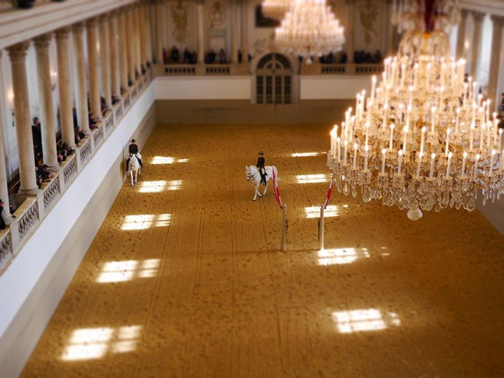 Spanish Riding School, Things to do in Vienna, Austria