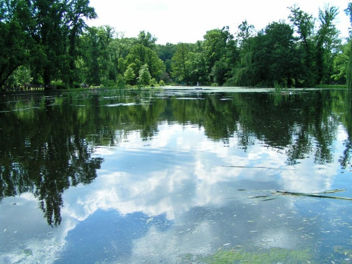 Lake in Stromovka Park, Things to do in Prague, The Czech Republic