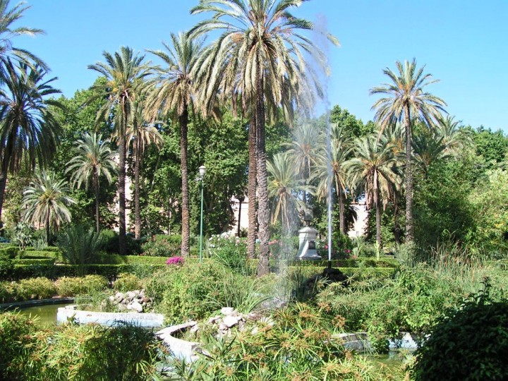 Palms in the Park at Villa Bonanno, Things to do in Palermo, Sicily, Italy
