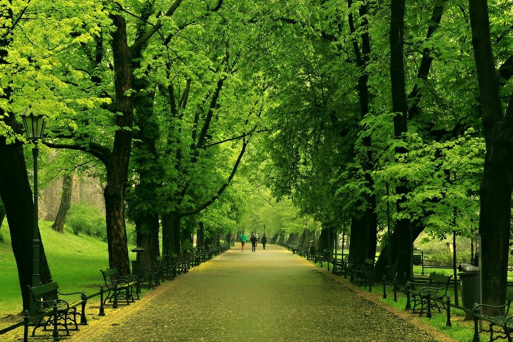 Planty Park, Things to do in Krakow, Poland