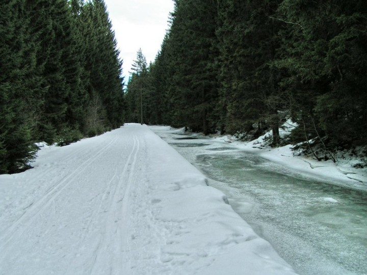 Cross-country skiing trail, Sumava National Park, National Parks of the Czech Republic