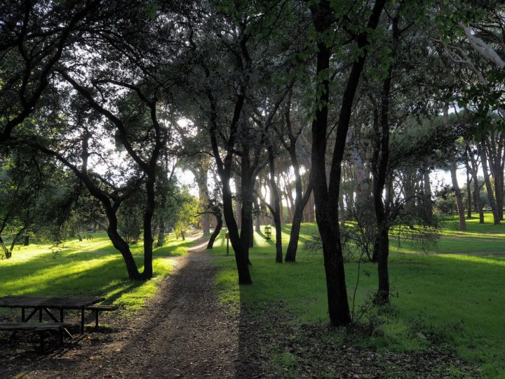 15 best things to do in madrid - Casa de campo park ...