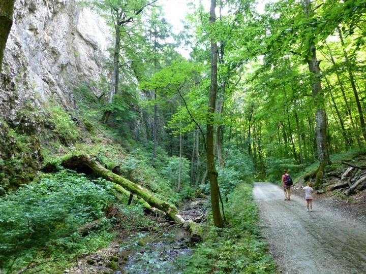 Path in Zadielska gorge, Slovak Karst National Park, Slovakia - 2