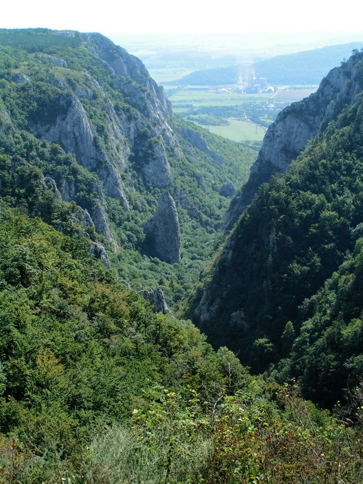 Zadielska gorge as seen from plateau, Slovak Karst National Park, Slovakia