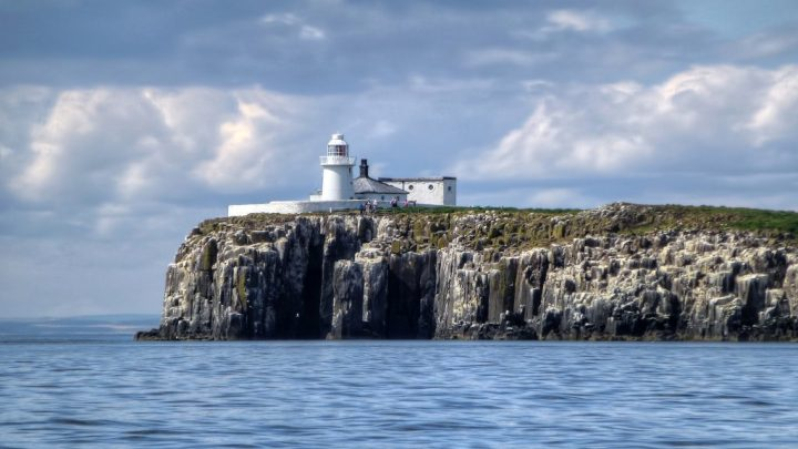 Farne Islands, Northumberland, Diving in the UK