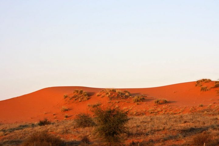 Red dunes in the Kgalagadi-Kalahari, Spots to Visit in South Africa