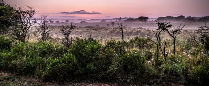 iSimangaliso Wetland Reserve, Spots to Visit in South Africa