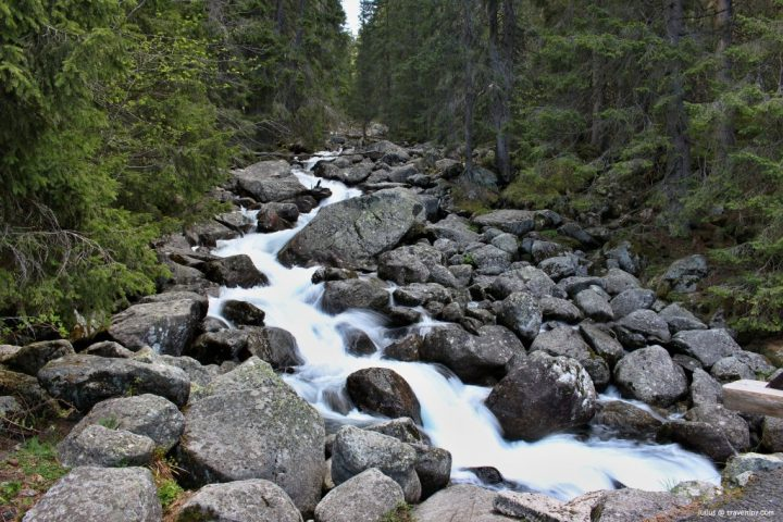 River at the way to Popradske pleso glacial lake, High Tatras, Slovakia