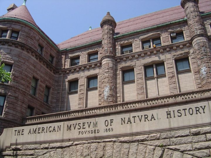 American Museum of Natural History, Things to do in NYC, USA