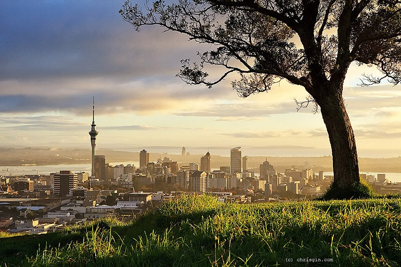Mount Eden, best area to stay in Auckland